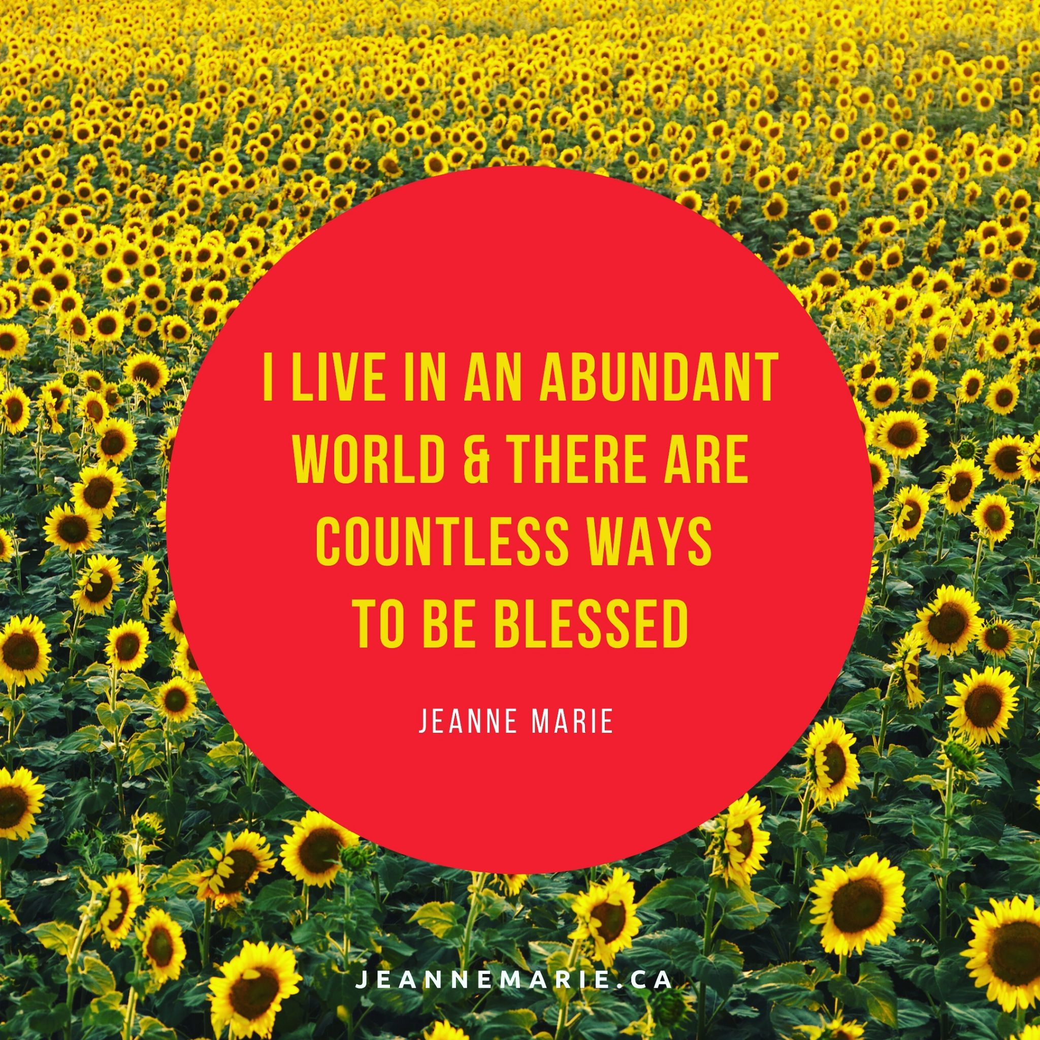 I live in an abundant world